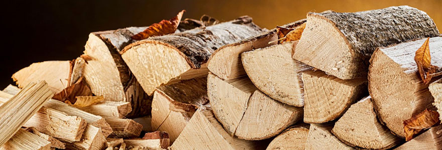 Chauffage au bois : faire ses achats de bois de chauffage en ligne